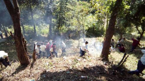 Boys clearing the neighbouring land